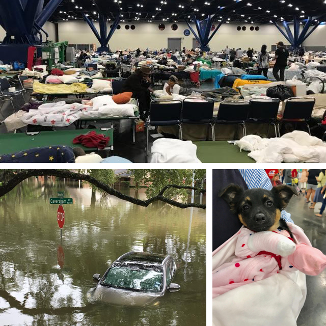 Images from ShelterBox show the impacts of Harvey - Sept 2017