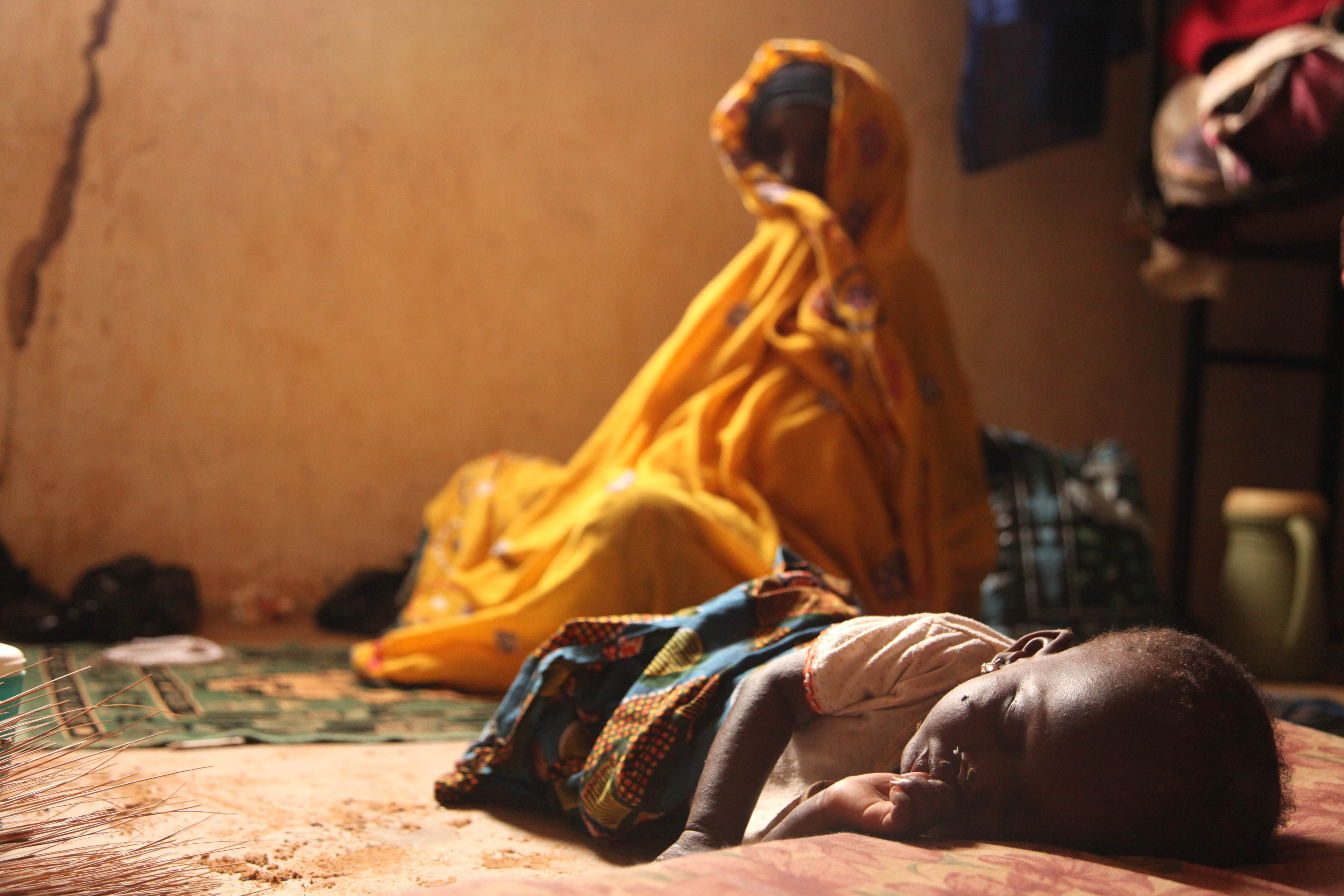 Niger Flooding 2010 - Lake Chad Basin
