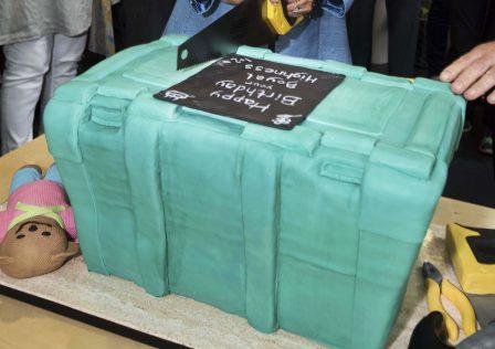 Green ShelterBox Cake